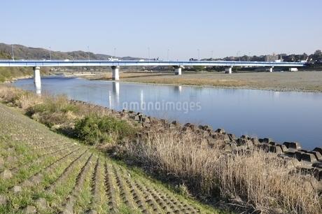 かながわの橋100選 高田橋の写真素材 [FYI02915133]