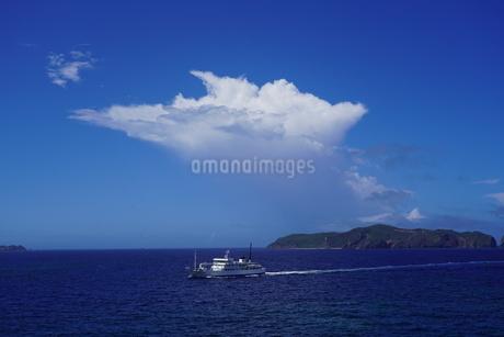 母島の写真素材 [FYI02915440]