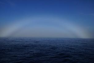 妹島の朝霧の写真素材 [FYI02916329]