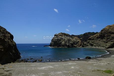 向島の小湊海岸の写真素材 [FYI02916746]