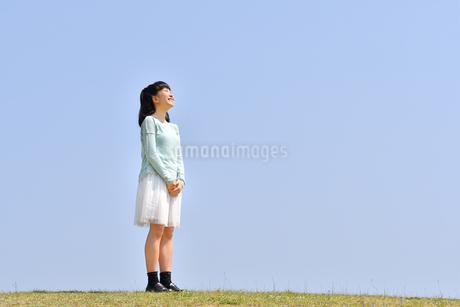 青空で見上げる女の子(芝生広場)の写真素材 [FYI02917306]