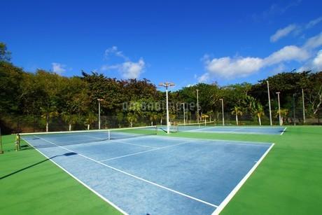 母島のテニスコートの写真素材 [FYI02917413]