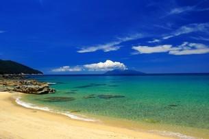 屋久島の永田いなか浜の写真素材 [FYI02917415]