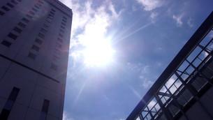岡山の日光の写真素材 [FYI02919760]