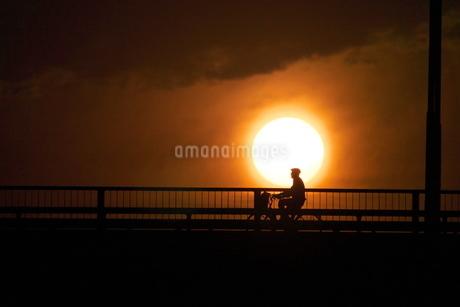 男の帰り道の写真素材 [FYI02919890]