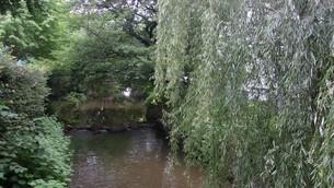 二ヶ領用水(川崎市)の写真素材 [FYI02919960]