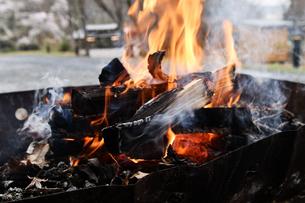 キャンプの焚火の写真素材 [FYI02921961]