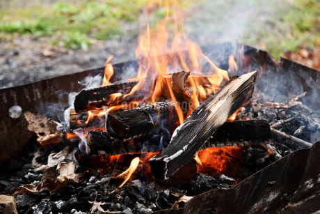 キャンプの焚火の写真素材 [FYI02921962]