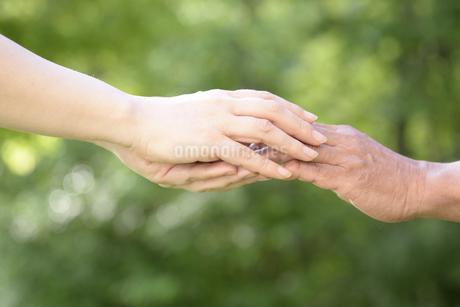 介護のイメージの写真素材 [FYI02921976]