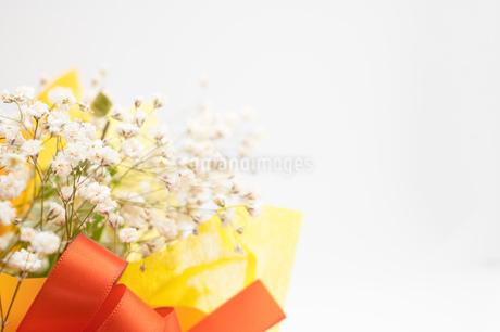 お祝いの花束の写真素材 [FYI02922169]