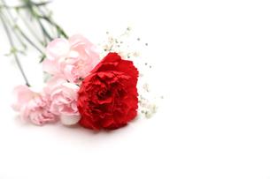 薔薇とカスミソウの花束の写真素材 [FYI02922202]