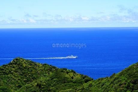 母島の写真素材 [FYI02922326]