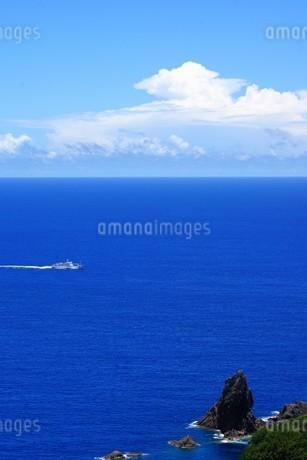 母島の写真素材 [FYI02922328]