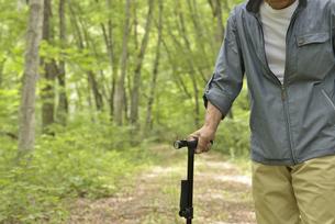 林の中で老人が杖を使ってリハビリの写真素材 [FYI02922375]