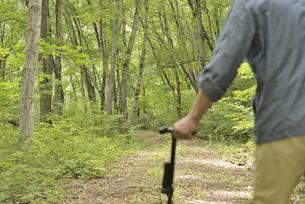 林の中で老人が杖を使ってリハビリの写真素材 [FYI02922376]