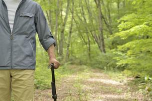 林の中で老人が杖を使ってリハビリの写真素材 [FYI02922378]