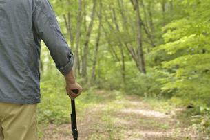 林の中で老人が杖を使ってリハビリの写真素材 [FYI02922379]