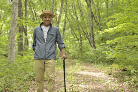林の中で老人が杖を使ってリハビリの写真素材 [FYI02922382]