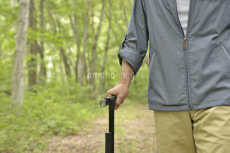 林の中で老人が杖を使ってリハビリの写真素材 [FYI02922387]