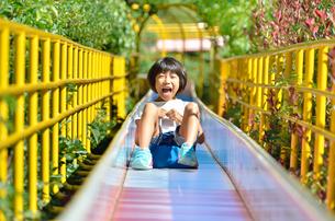滑り台で遊ぶ女の子の写真素材 [FYI02922509]