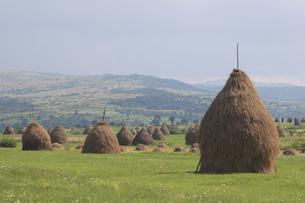 田園風景の写真素材 [FYI02923129]