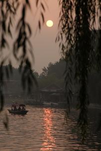 柳の枝越しに見る夕日と湖の写真素材 [FYI02923164]