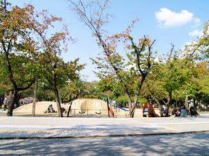 南側から見る江坂公園ちびっこ広場の写真素材 [FYI02923666]