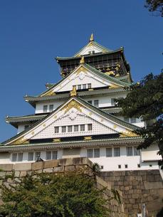 南東側から見上げる大阪城の写真素材 [FYI02923710]