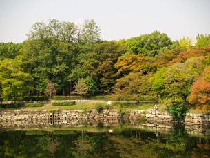 大阪城内濠と釣り人の写真素材 [FYI02923713]