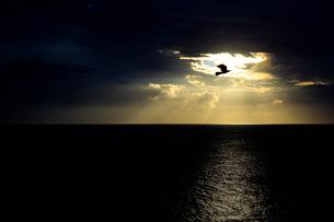 雲間の光と海の写真素材 [FYI02923733]