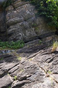 岩盤の地層の写真素材 [FYI02923842]