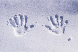 積雪と手の跡の写真素材 [FYI02925141]
