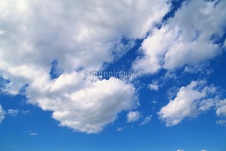 青空に浮かぶ雲の写真素材 [FYI02925882]