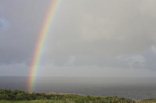 虹のかかった東平安名崎の写真素材 [FYI02926962]