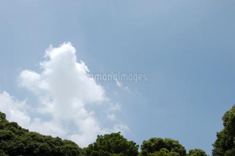 空と雲の写真素材 [FYI02927271]