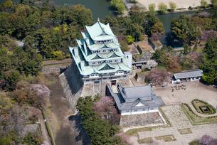 名古屋城の写真素材 [FYI02927666]