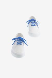 青い紐の着いた白いスニーカーの写真素材 [FYI02927752]