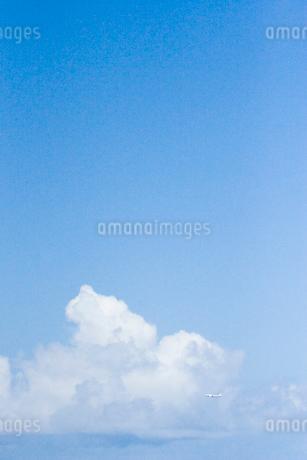 青空と飛行機の写真素材 [FYI02927930]