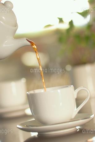 ティーカップに注ぐ紅茶の写真素材 [FYI02927932]