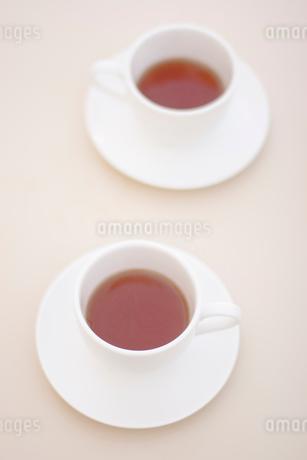 紅茶の写真素材 [FYI02927938]