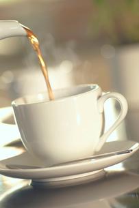 ティーカップに注ぐ紅茶の写真素材 [FYI02927942]