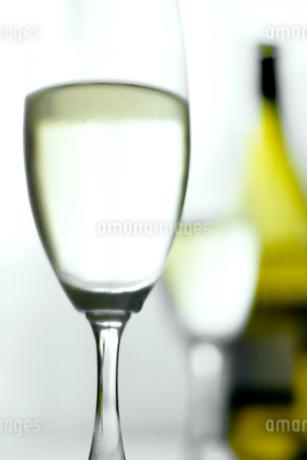 グラスに入った白ワインの写真素材 [FYI02927945]