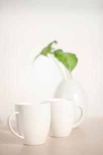 マグカップ2つの写真素材 [FYI02927952]