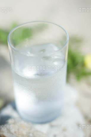 グラスの水の写真素材 [FYI02927959]