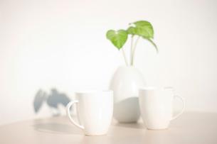 マグカップ2つの写真素材 [FYI02927960]