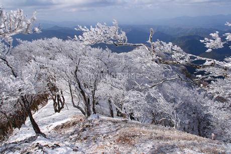 高見山の霧氷の写真素材 [FYI02928472]