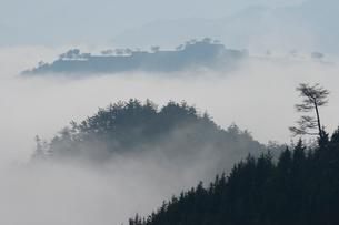 竹田城跡の写真素材 [FYI02928480]
