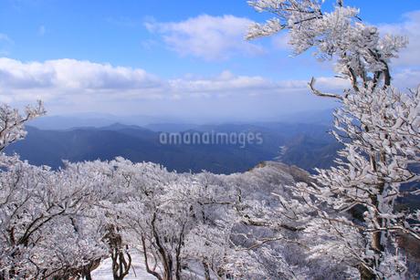 高見山の霧氷の写真素材 [FYI02928489]