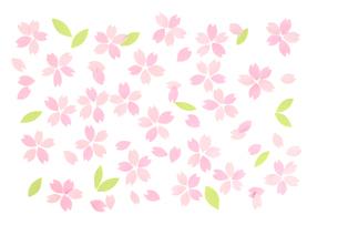 桜の花びらの春イメージのイラスト素材 [FYI02928497]