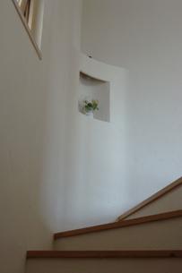 階段の棚のニッチの花の写真素材 [FYI02928673]